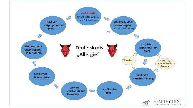 teufelskreis_allergie_homepage