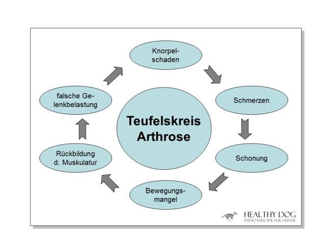 teufelskreis_artrose